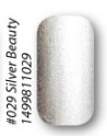Lak na nehty 029 Silver Beauty 11ml
